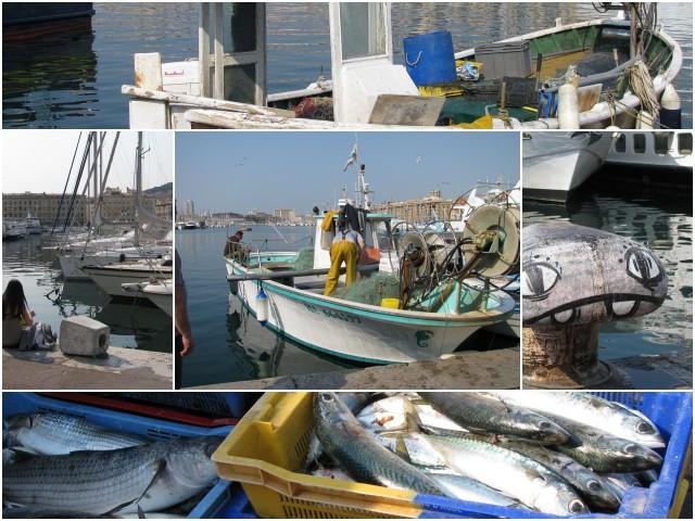 Vieux-Port6